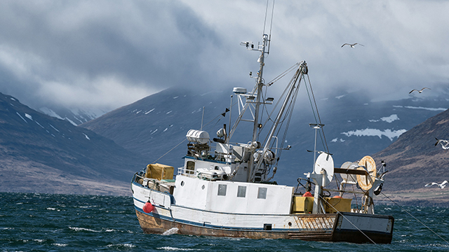 A fishing boat near a harbor.